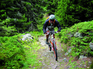 Hiking and biking holidays Zillertal